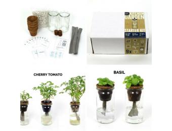 DIY - Seed Starter Kit