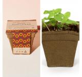 Sunflower Drop-In Kit