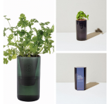 Basil & Parsley Tumbler