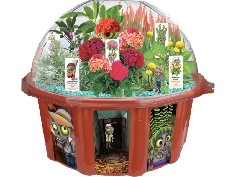 zombie farm terrarium indoor plants garden kit. Black Bedroom Furniture Sets. Home Design Ideas