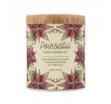 Poinsettia Grow Kit