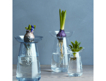 Glass Vase - Large